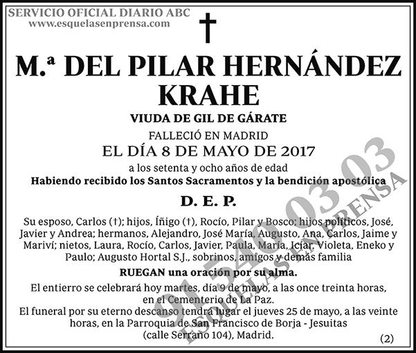 M.ª del Pilar Hernández Krahe